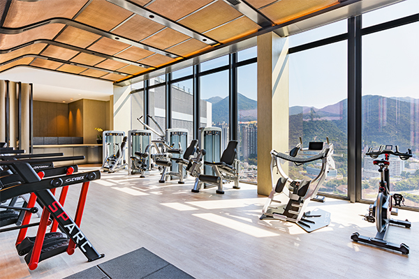 alva-discovery-wellness-gym