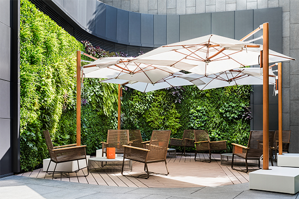 alva-discovery-wellness-patio