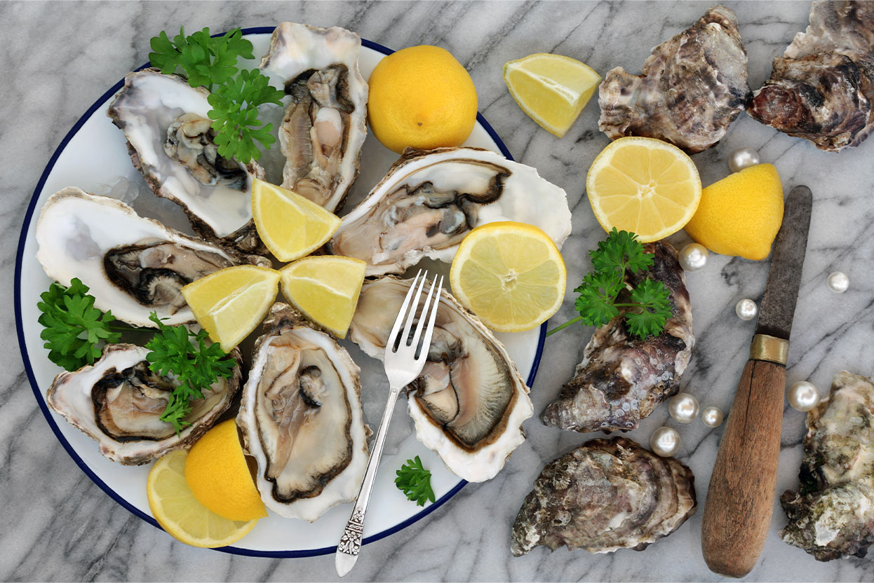 alva-gallery-dining-alva-house-freshly-shucked-oyster