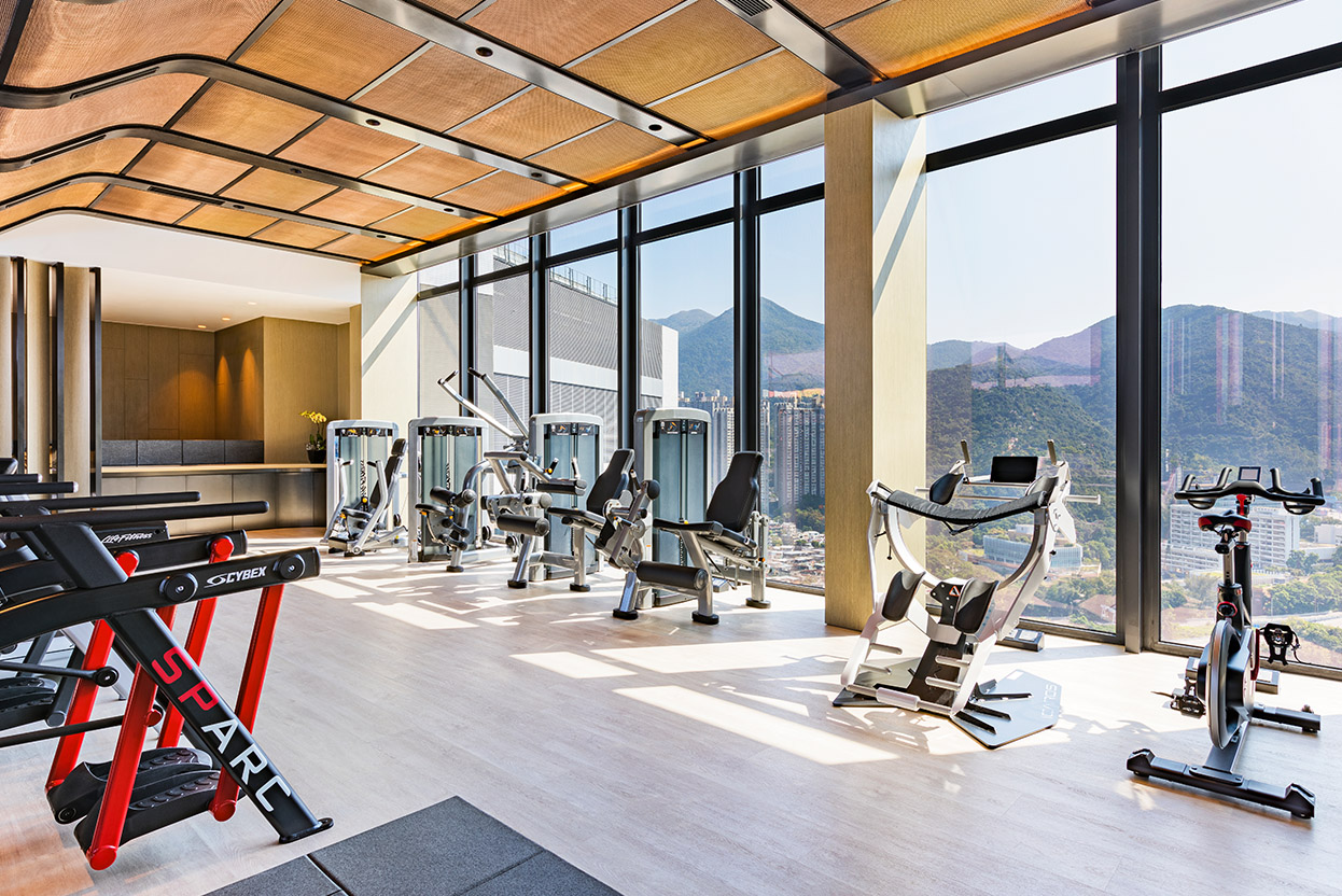 alva-gallery-wellness-display-gym