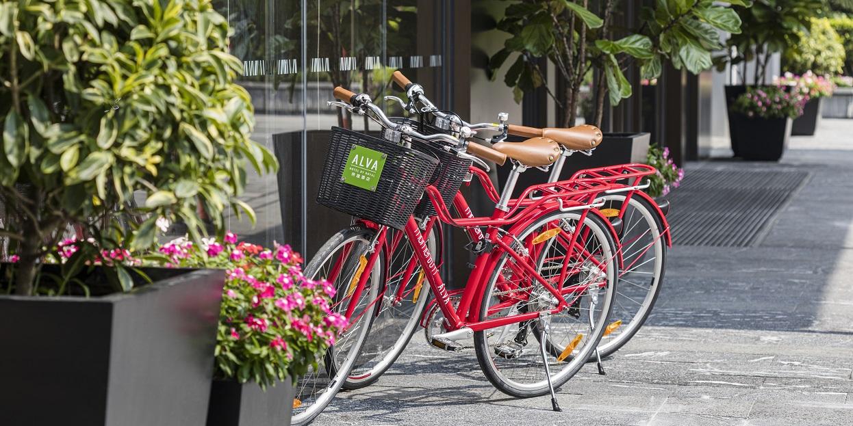 alva-wellness-hotel-bike-rental-1246-623